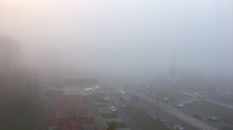 Странный туман ползет к центру Петербурга