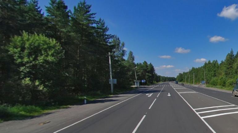 В Ленинградской области водитель иномарки насмерть сбил пешехода и едва не погиб сам.