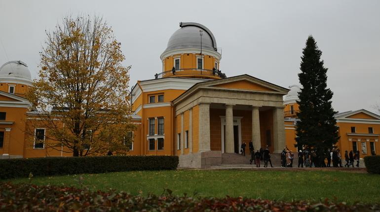 Студентку в парке Пулковской обсерватории облапал неизвестный