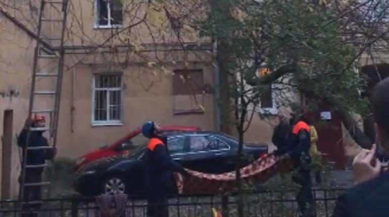 Сотрудники МЧС спасли кота на Васильевском