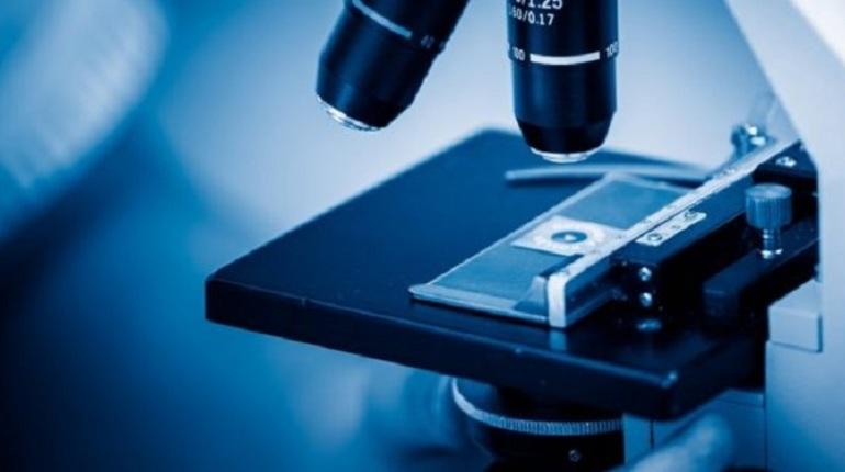 Геном россиян могут приравнять к персональным данным, соответствующий законопроект Роспотребнадзор планирует внести в правительство. Об этом в среду, 17 октября, заявила глава ведомства Анна Попова.