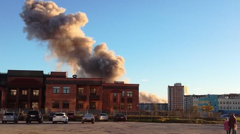 Жителям Гатчинского района Ленобласти, чьи дома пострадали в результате взрыва на заводе