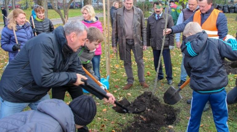 Албин с детьми высадил липы на проспекте Космонавтов