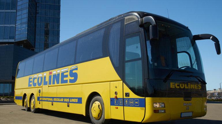 Из Петербурга в Петрозаводск автобусный перевозчик Ecolines откроет регулярные рейсы. Об этом сообщает пресс-служба компании.