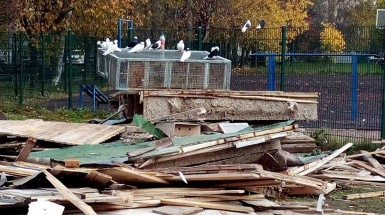 Прокуратура Выборгского района Петербурга проведет проверку информации об уничтожении голубятни. Об этом сообщается на сайте ведомства.