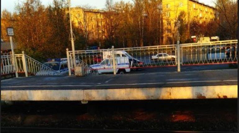 Тело девушки нашли у железнодорожной платформы Дачное в Петербурге.