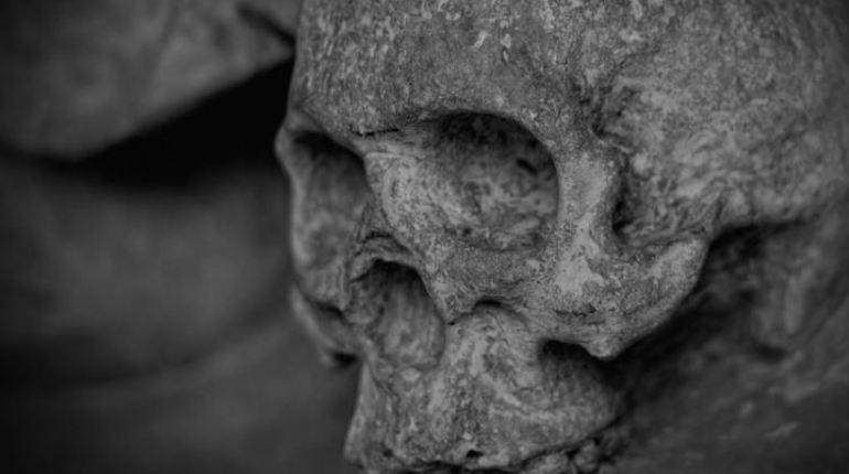 На территории московского зоопарка обнаружили фрагменты человеческих костей. Их заметили рабочие во время замены теплотрассы на Большой Грузинской улице.