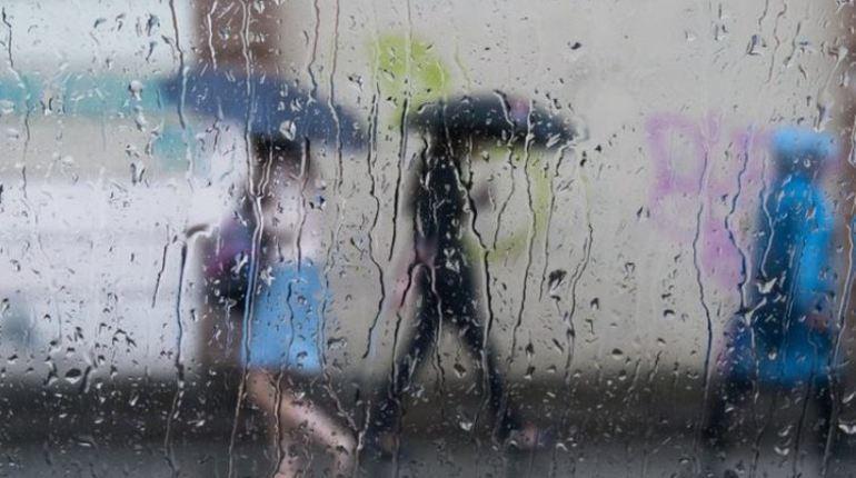 Четверг в Петербурге будет дождливым и холодным