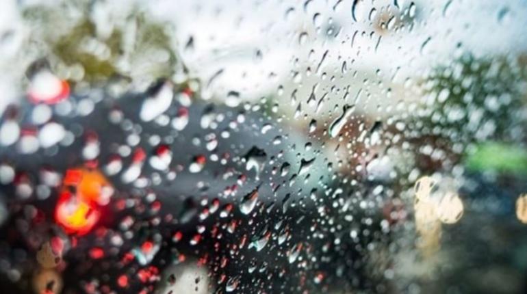 25 октября в Ленобласти ожидают дождь и мокрый снег, утром возможны туман и гололедица на дорогах.