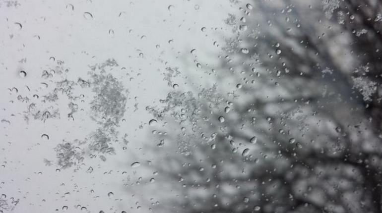 В Петербурге в пятницу ожидают дождь, снег и небольшой ветер. Воздух прогреется до 3-5 градусов тепла.