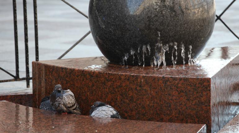 Петербургские фонтаны продолжают готовить к зиме.