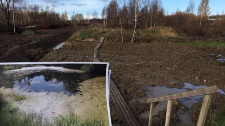 В Санкт-Петербурге возбудят сразу два уголовных дела после уничтожения водоема в Петродворцовом районе города. При проведении строительных работ пруд полностью засыпали грунтом.