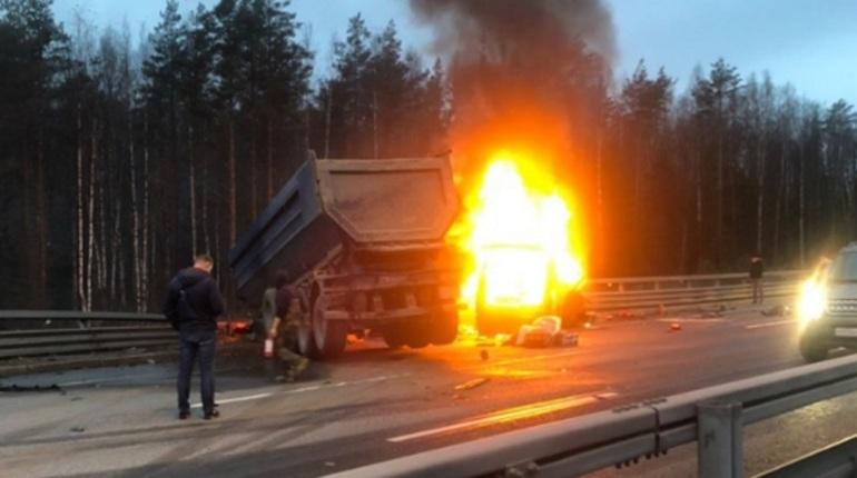 В Петербурге начали проверку после того, как в ДТП на ЗСД погибли, по предварительным данным, шесть человек. Несколько из них сгорели в автомобиле.