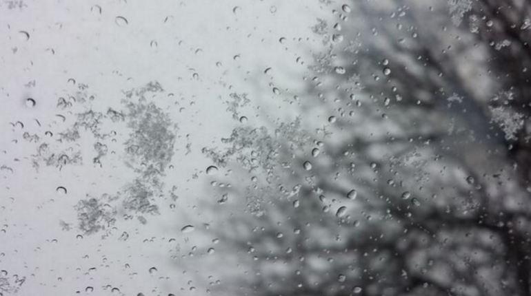 Улицы Ленобласти припорошило снегом