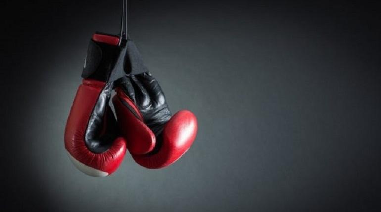 Участниками турнира, который завершился в воскресенье, 28 октября, стали боксеры из России, Финляндии и Эстонии. Сам турнир состоялся в Выборге.