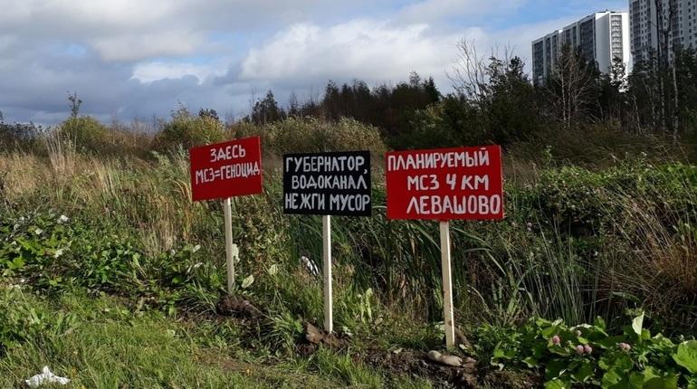 Торговые центры Петербурга облюбовали мнимые представители Гринписа. Несколько дней они собирают подписи в поддержку мусоросжигательных заводов. В самом экологическом движении ни о чем таком не слышали.