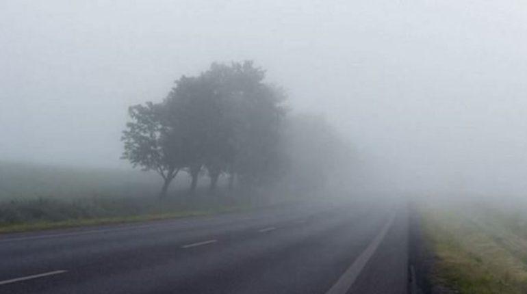 Ноябрь в Ленобласти начнется с тумана, мороси и гололеда