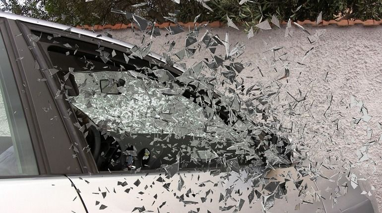 На трассе Сланцы-Кингисепп легковушка сбила лося и попала под грузовик