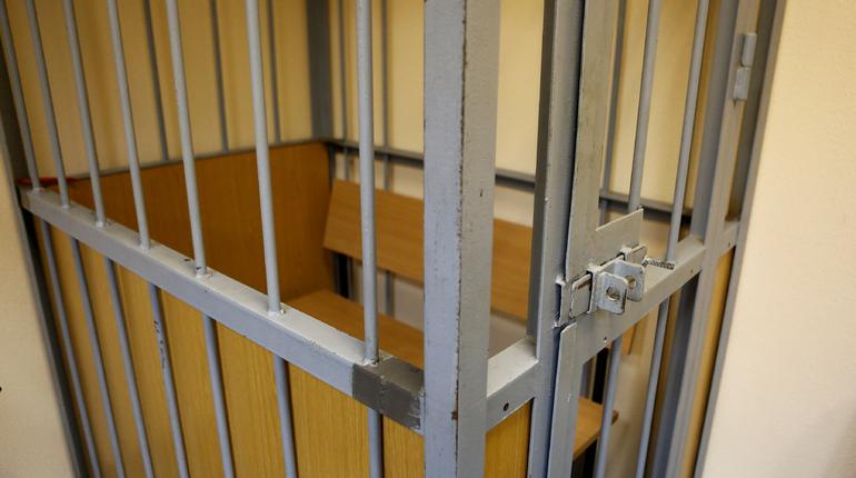 Выборгский районный суд Петербурга огласил приговор в отношении петербуржца. Он был признан виновен растлении несовершеннолетнего ребенка. Дело слушалось в особом порядке.