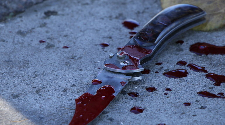 Жительница Петербурга пырнула ножом собственного мужа в одном из домов по Приморскому проспекту.