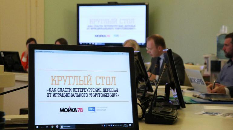 «Мойка78» подготовила чертову дюжину вопросов комитету по благоустройству про деревья