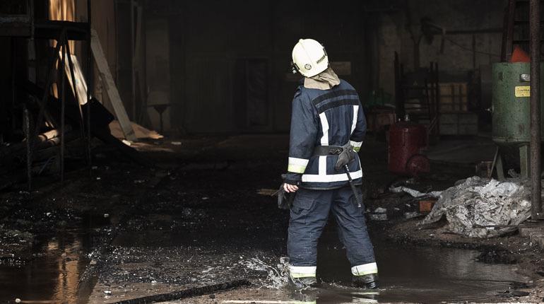 В Выборгском районе Ленинградской области вечером 2 ноября произошел сильный пожар. Об этом сообщает ГУ МЧС по Ленобласти.