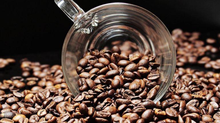 Исследователи из Университета Томаса Джефферсона в Филадельфии узнали о неожиданной пользе кофе. Этот бодрящий напиток может насытить клетки организма кислородом и поможет в их восстановлении.