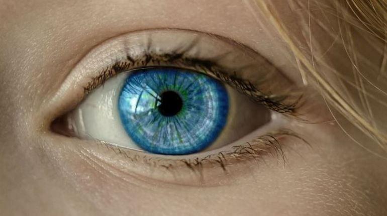 Международная группа исследователей научила нанороботов пробираться внутрь глаза. В этом ученым помогли хищные растения. Эти опыты должны помочь офтальмологам расширить возможности их работы.