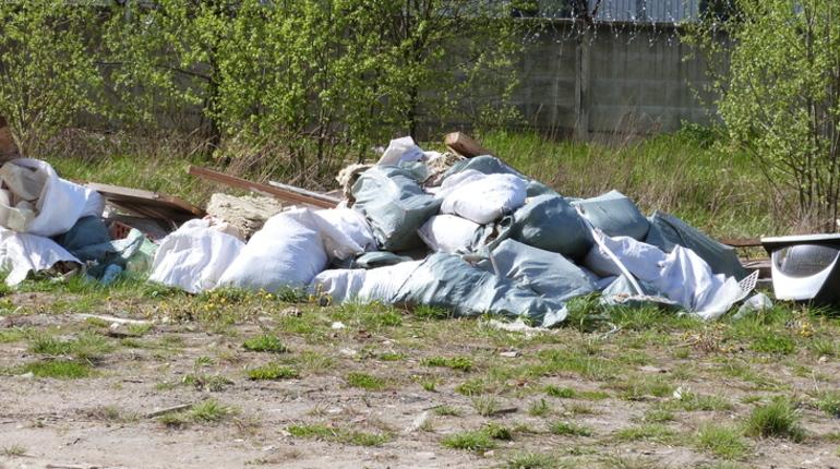 Согласно рейтингу Pollution Index 2018 Mid-Year, Петербург оказался среди 20 самых грязных городов Европы.