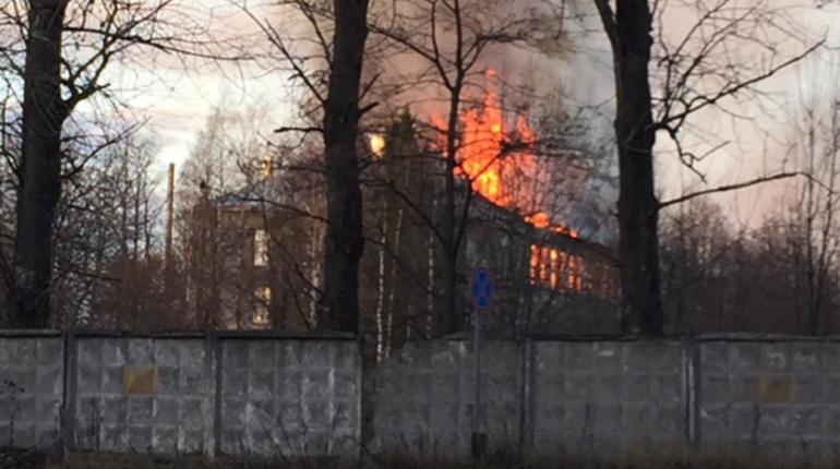 Крупный пожар на территории воинской части во Всеволожском районе Ленинградской области потушили вечером 5 ноября. В микрорайоне Черная речка в Сертолово горело неиспользуемое здание в воинской части.