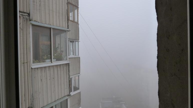 Туман, морось и слабый дождь ждет петербуржцев 7 ноября.