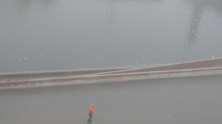 По прогнозам синоптиков, в четверг, 8 ноября, Петербург накроет туманом, а с неба будет сыпаться морось. Горожан просят отказаться от поездок на машине.