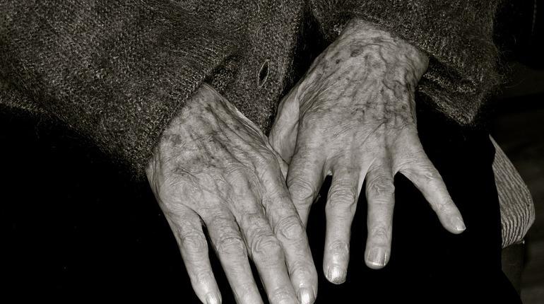 Труп 80-летней женщины обнаружили 7 ноября в поселке Кузьмоловский Всеволожского района Ленобласти. На погибшей нет штанов и нижнего белья.