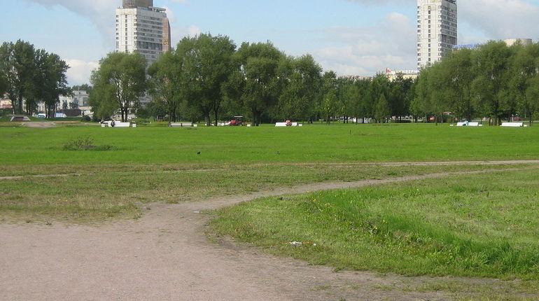 Левые активисты установили в Пулковском парке символические надгробия депутатам Госдумы от Петербурга. Таким образом они выражали протест против пенсионной реформы.