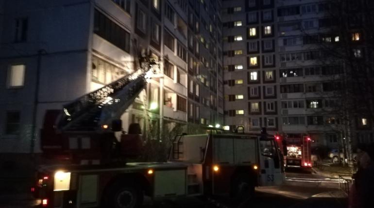 Спасатели оперативно потушили пожар в одной из квартир дома на Планерной улице в Приморском районе Петербурга. Для ликвидации пожара им понадобилось полчаса.