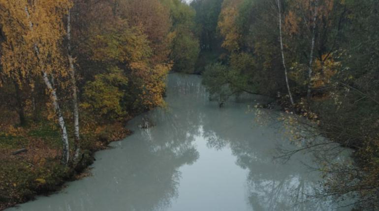 Природоохранная прокуратура Петербурга провела проверку реки Славянки, после поступления сообщений о загрязнении водоема.