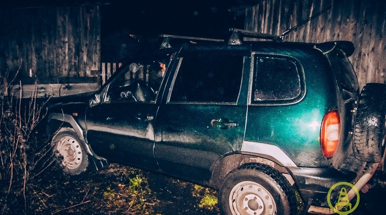 В Подпорожском районе Ленобласти вечером 8 ноября пьяный водитель на Chevrolet Niva насмерть сбил 10-летнюю девочку и сбежал. После поимки мужчина признался, что принял ребенка за собаку.