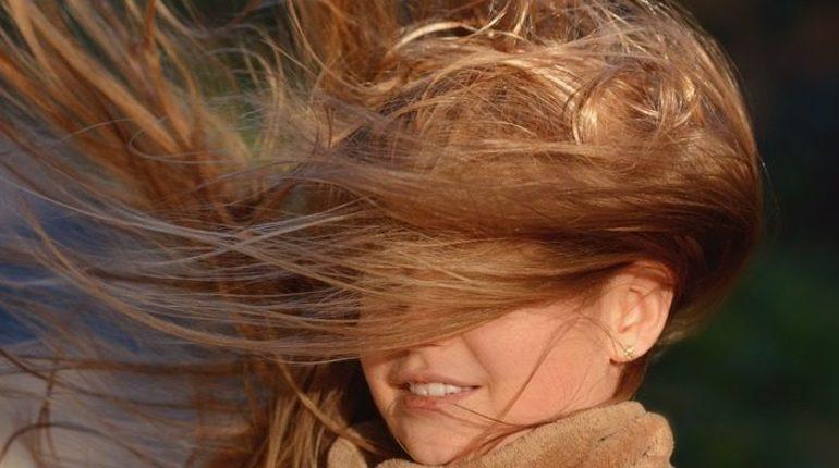 Об усилении ветра в воскресенье предупреждает петербуржцев городское ГУ МЧС. Согласно имеющемуся прогнозу, ветер в городе усилится до 6-11 метров в секунду.