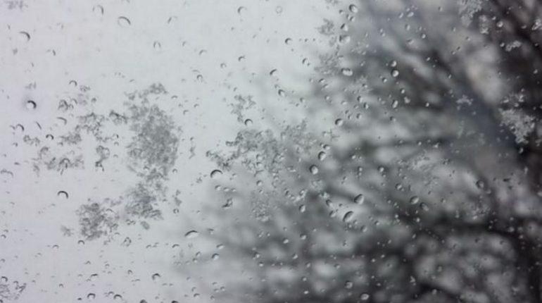 Сложная погода ожидается в Ленобласти в среду, 14 ноября - дождь, снег, туман и гололед, предупреждает региональное ГУ МЧС.