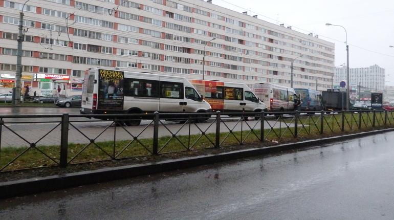 Полиция «прикрыла» нелегальные пассажирские перевозки в Пушкин и Тосно