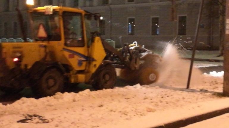 В комитете по благоустройству Петербурга открыли горячую линию, на которую можно обратиться по вопросам зимней уборки.