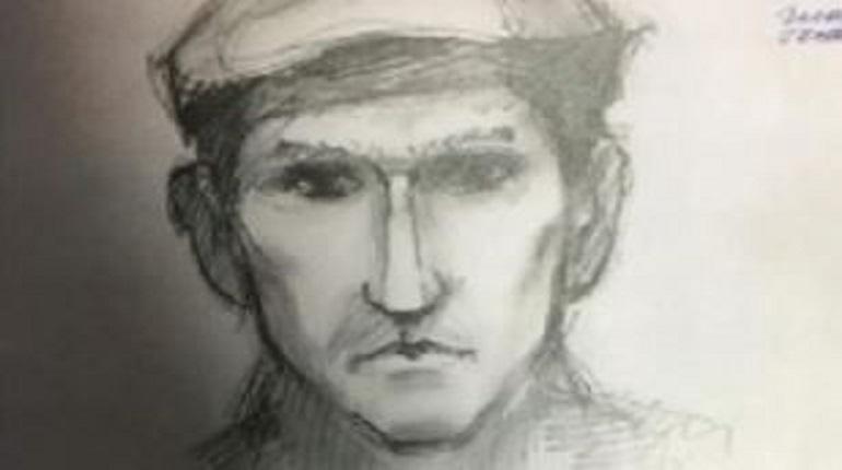 В Петербурге разыскивают мужчину, который надругался над 17-летней девочкой и 41-летней женщиной. В сети появилось изображение мужчины, которого до сих пор разыскивает полиция, хотя первое нападение злоумышленник совершил еще в 2009 году.