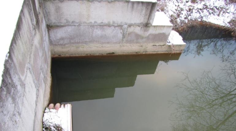 Специалисты Комитета по природопользованию Петербурга и активисты Кировского района провели совместный рейд реки Новой. Неприятного запаха там не обнаружилось.