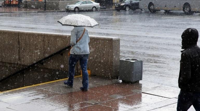 В Петербург пришла настоящая зима, хотя еще только ноябрь. 27 числа снежный фронт обрушился на город, который стал белоснежным за последние дни.