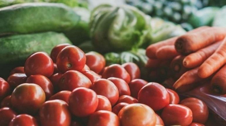 В Ленинградской области вырастет объем производства сельхозпродукции в 2019 году. Поддержку ленинградских аграриев увеличат на 5,7 млрд рублей.