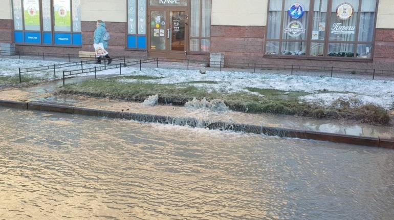 В Петербурге 28 ноября территорию близ дома на проспекте Луначарского, 64 залило холодной водой. Причиной потопа стала течь на газоне, где проходит водовод диаметром 300 мм, сообщили корреспонденту