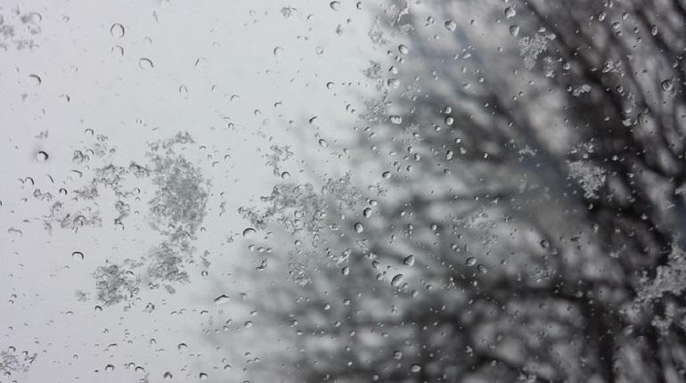Ураган ожидается в Петербурге в четверг, 29 ноября, предупреждает ГУ МЧС по городу. Местами ожидаются порывы ветра скоростью до 15 метров в секунду.