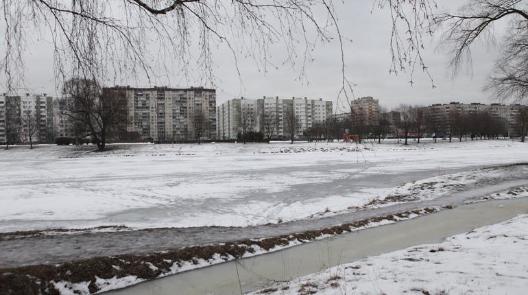 Власти Ленинградской области ищут подрядчика для строительства новой дороги из Петербурга от КАД в обход Мурино и Новое Девяткино.