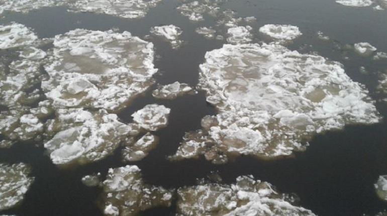 Колесов рассказал, когда петербуржцы начнут фотографировать льдины