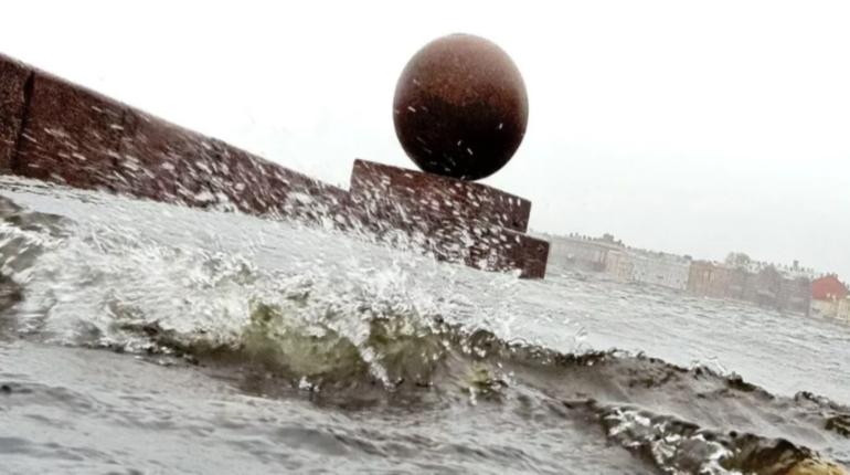 В ГУ МЧС по Петербургу предупредили горожан и гостей Северной столицы о сильном ветре. Его порывы в пятницу, 30 ноября, будут достигать 17 м/с.